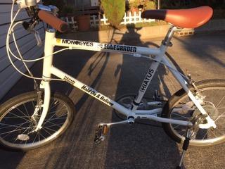 whitebike1.jpg